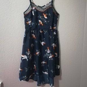 NWOT 🆕 Super sweet hi-low bird print dress